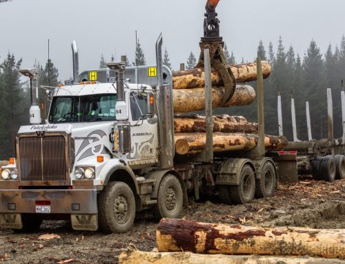 Mills-Tui log truck set up fitted on new Western Star